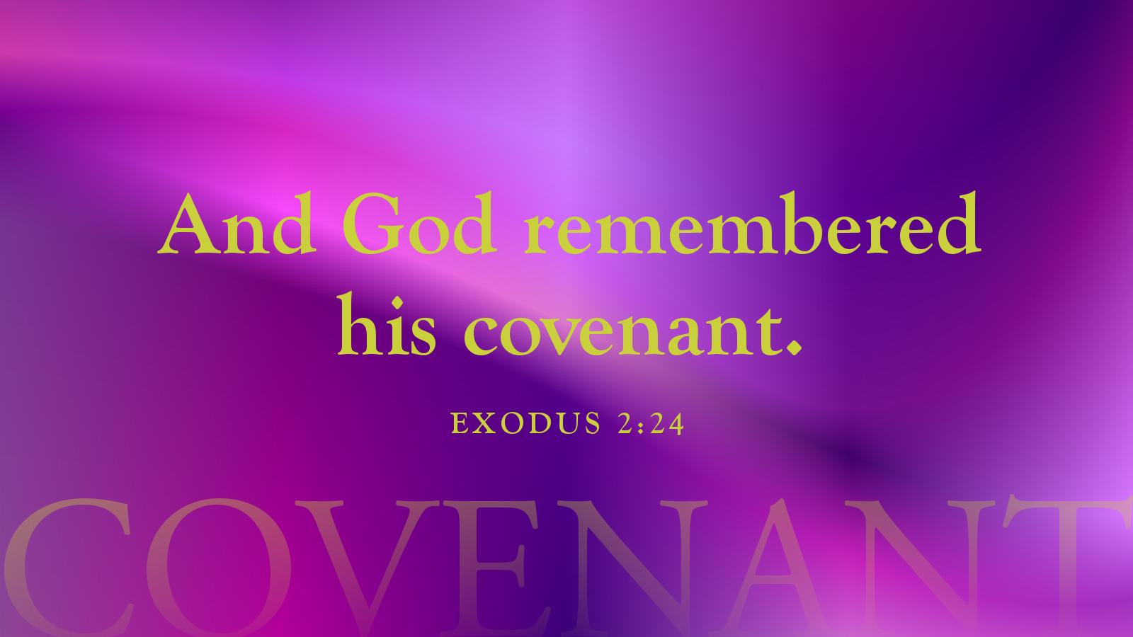 exodus2-24