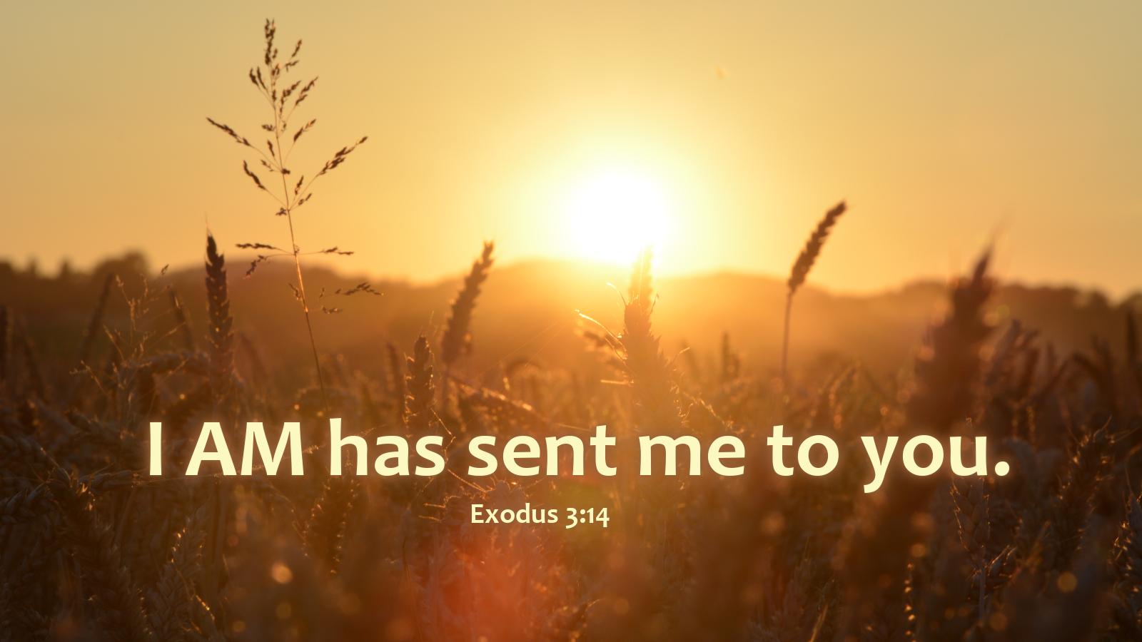 exodus3-14