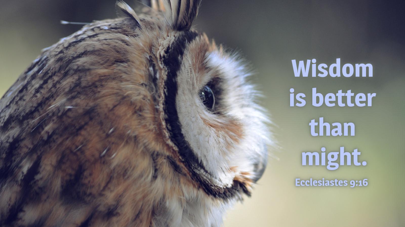 ecclesiastes9-16