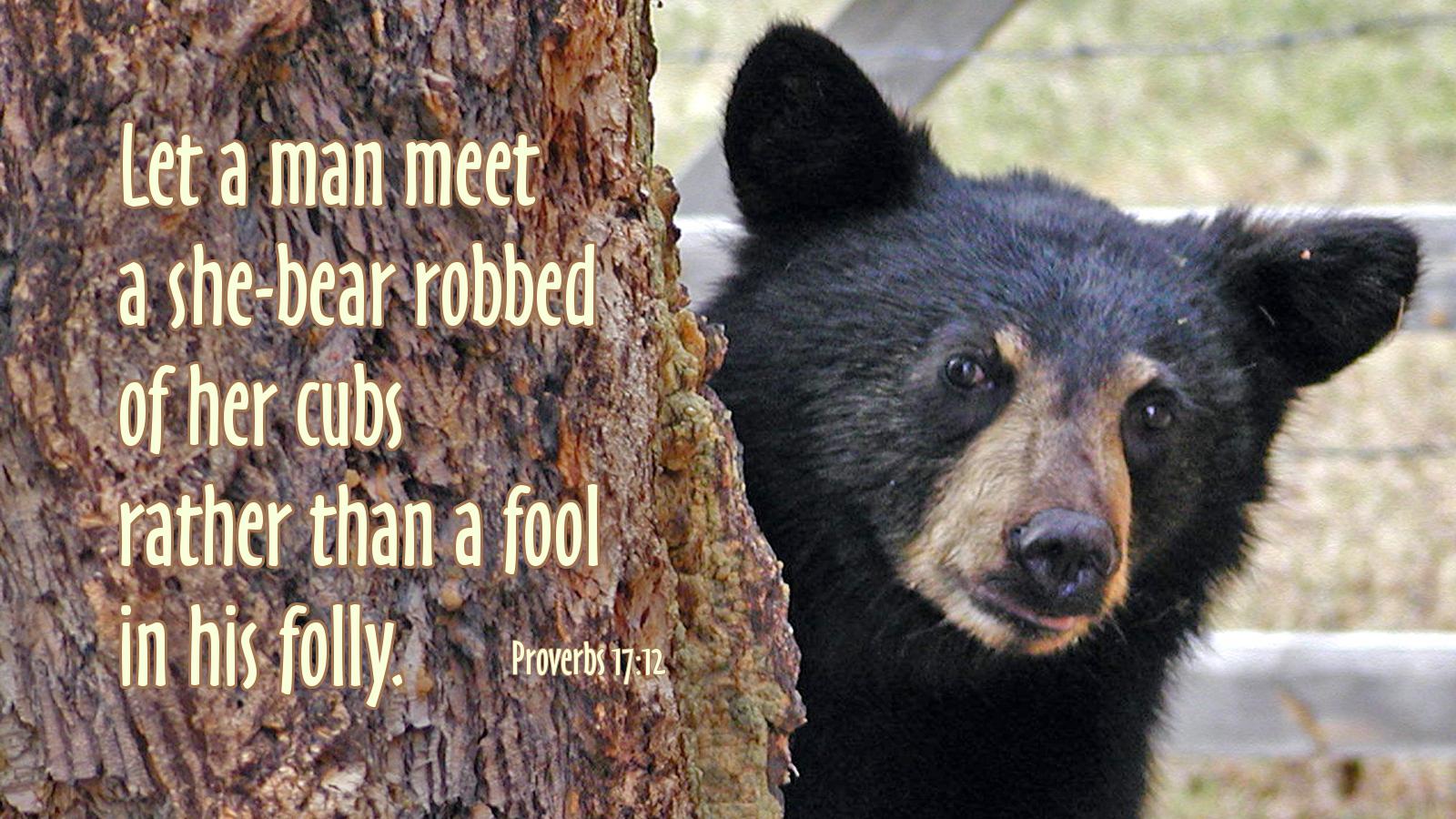 proverbs17-12