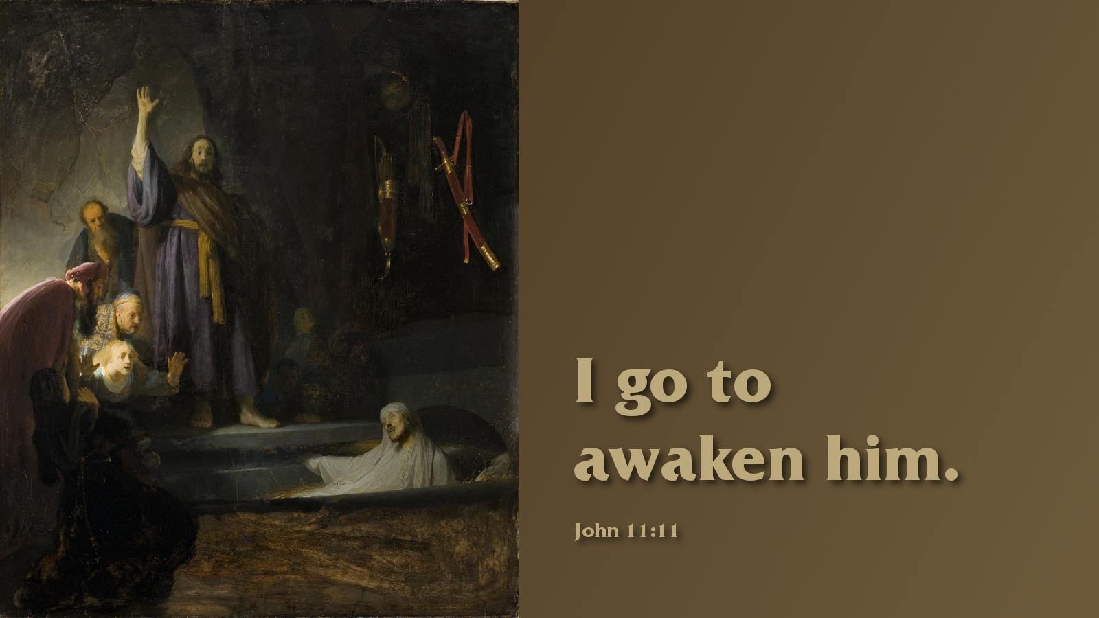 john11-11