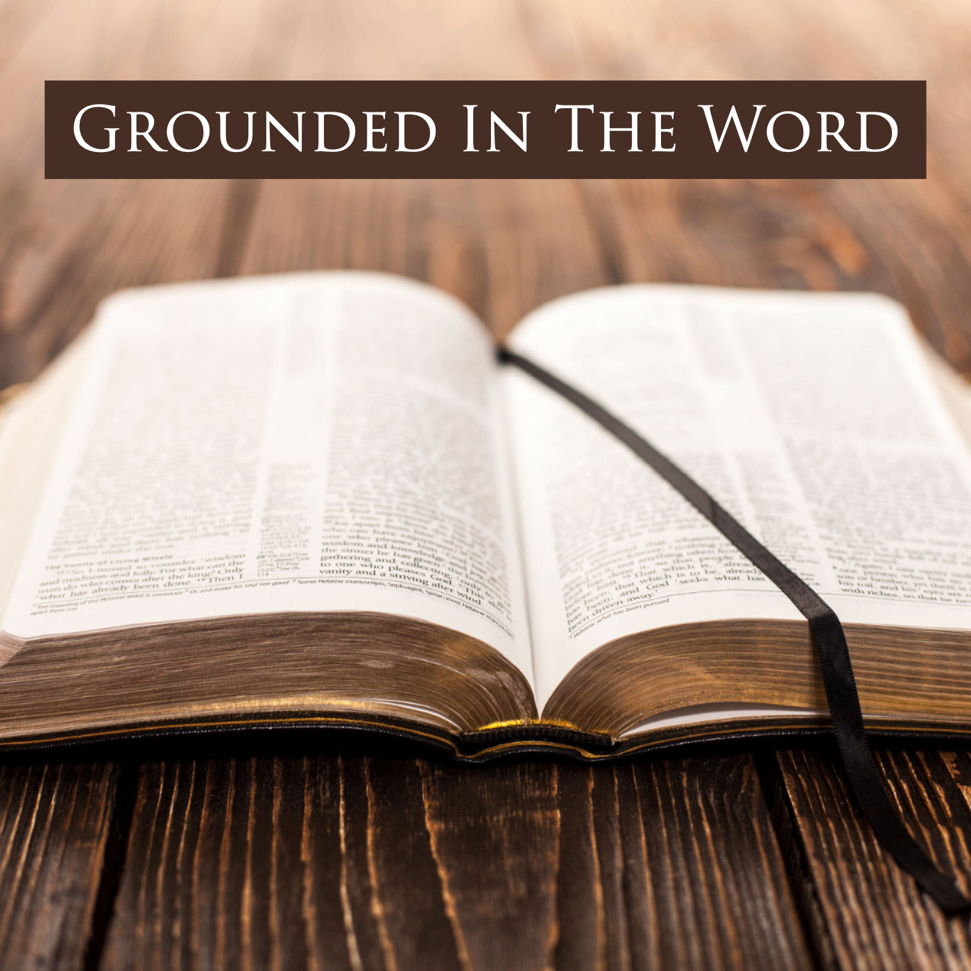 Grounded In The Word