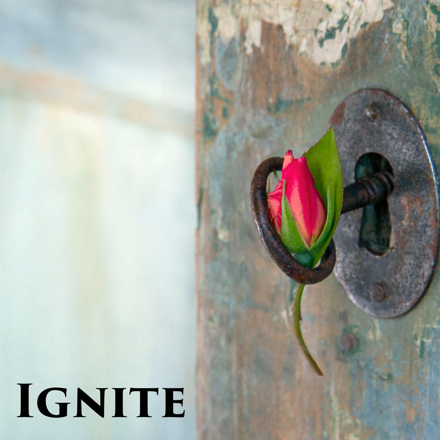 Ignite – Pastor David Wendel