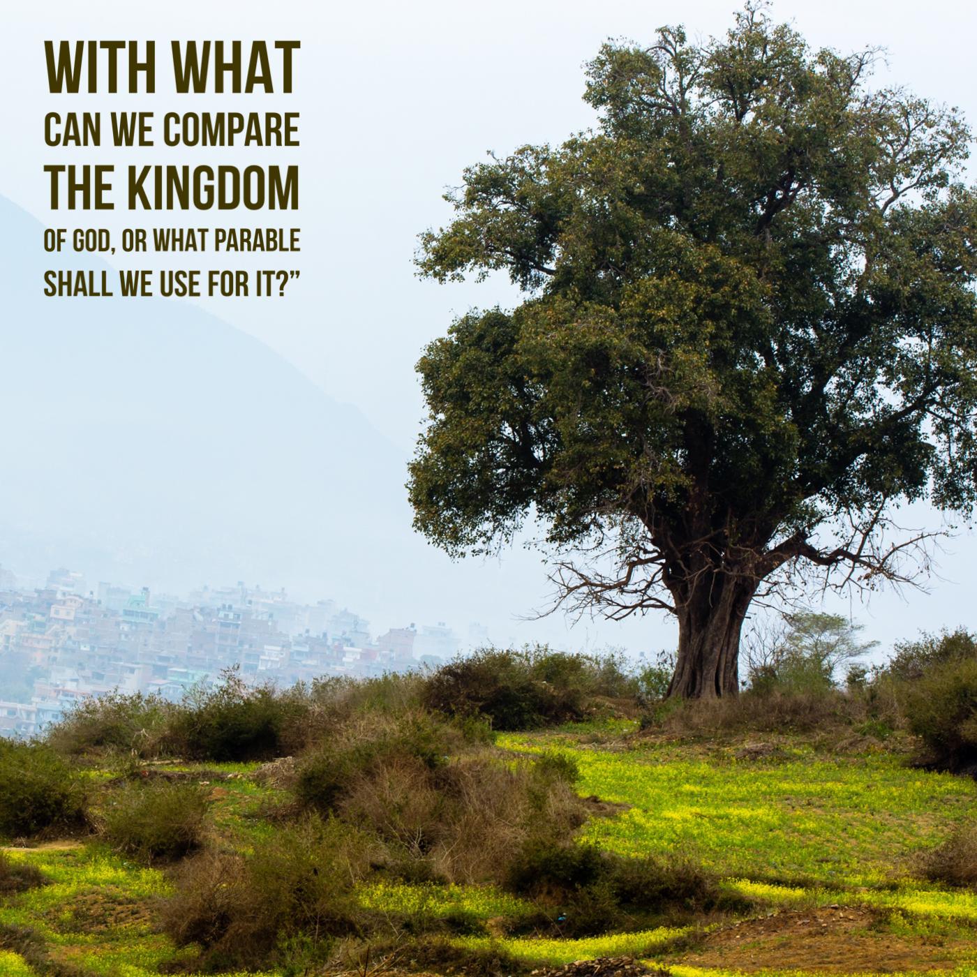 Ignite – The Secret of the Kingdom of God