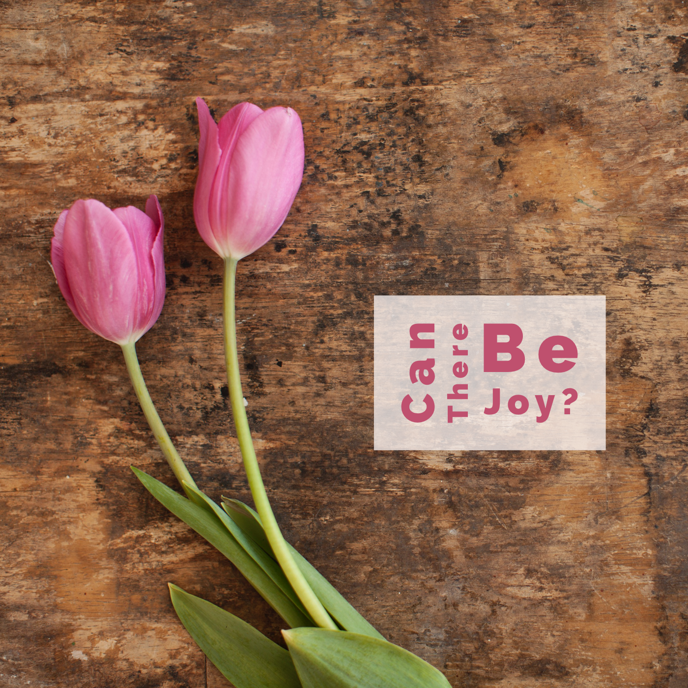 Ignite – Can There Be Joy