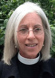 Amy C. Schifrin called as Director of  North American Lutheran Seminary