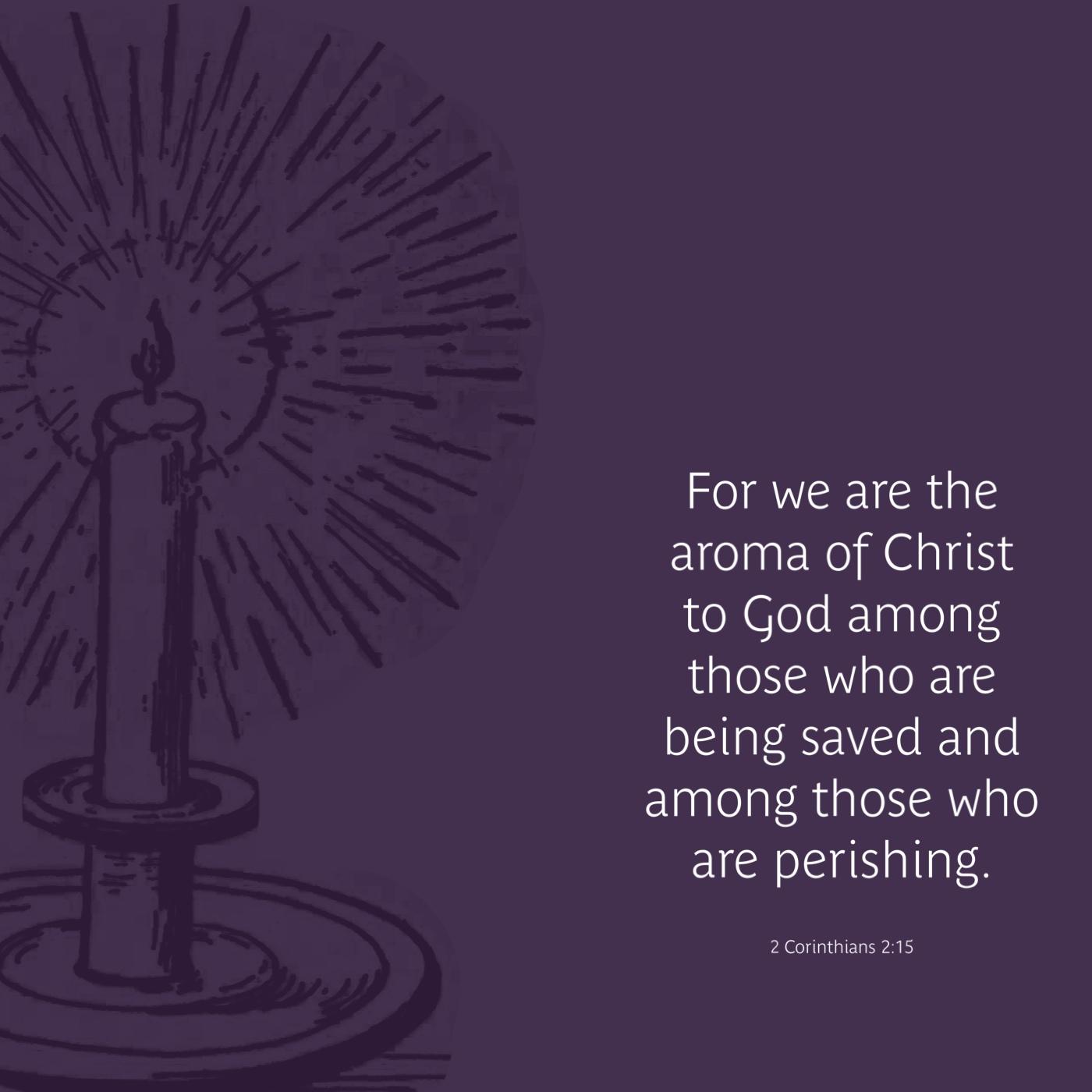 Thursday of Advent 2 – Advent Devotion