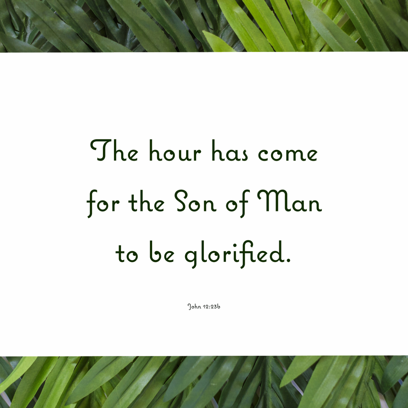 Lenten Devotional – Palm Sunday